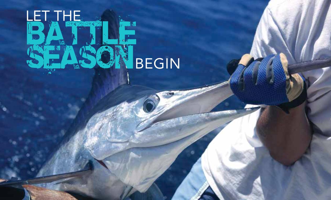 Billfish Tournaments Abaco Bahamas